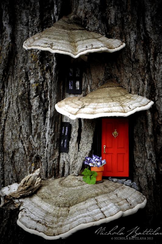 Fairy Garden Ideas: Curb Appeal