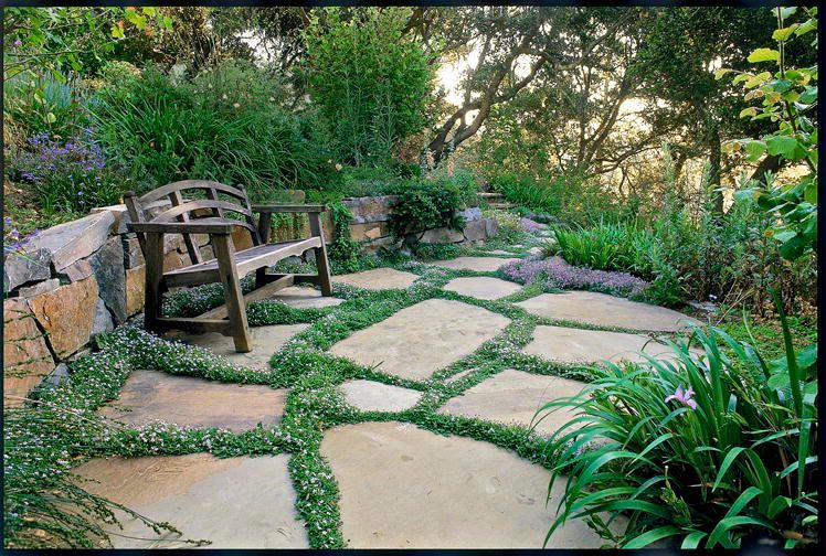65 Best Front Yard and Backyard Landscaping Ideas ... on Best Yard Design id=43135
