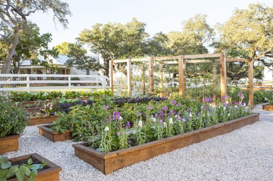Image result for fixer upper garden project