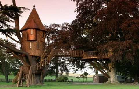 13 Tremendous Tree Houses   Spiral Staircase Around Tree Trunk   Stair Case   Nelson Treehouse   Staircase Design   Robert Mcintyre   Canopystair