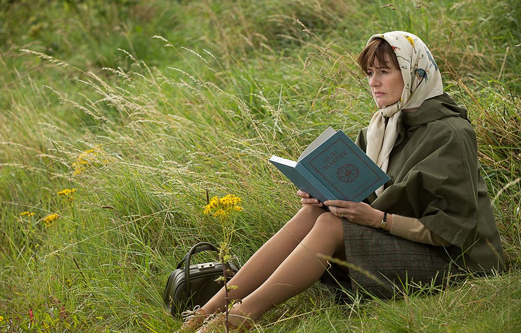 people in nature, sitting, grass, meadow, reading, botany, grass family, grassland, adaptation, wildflower,