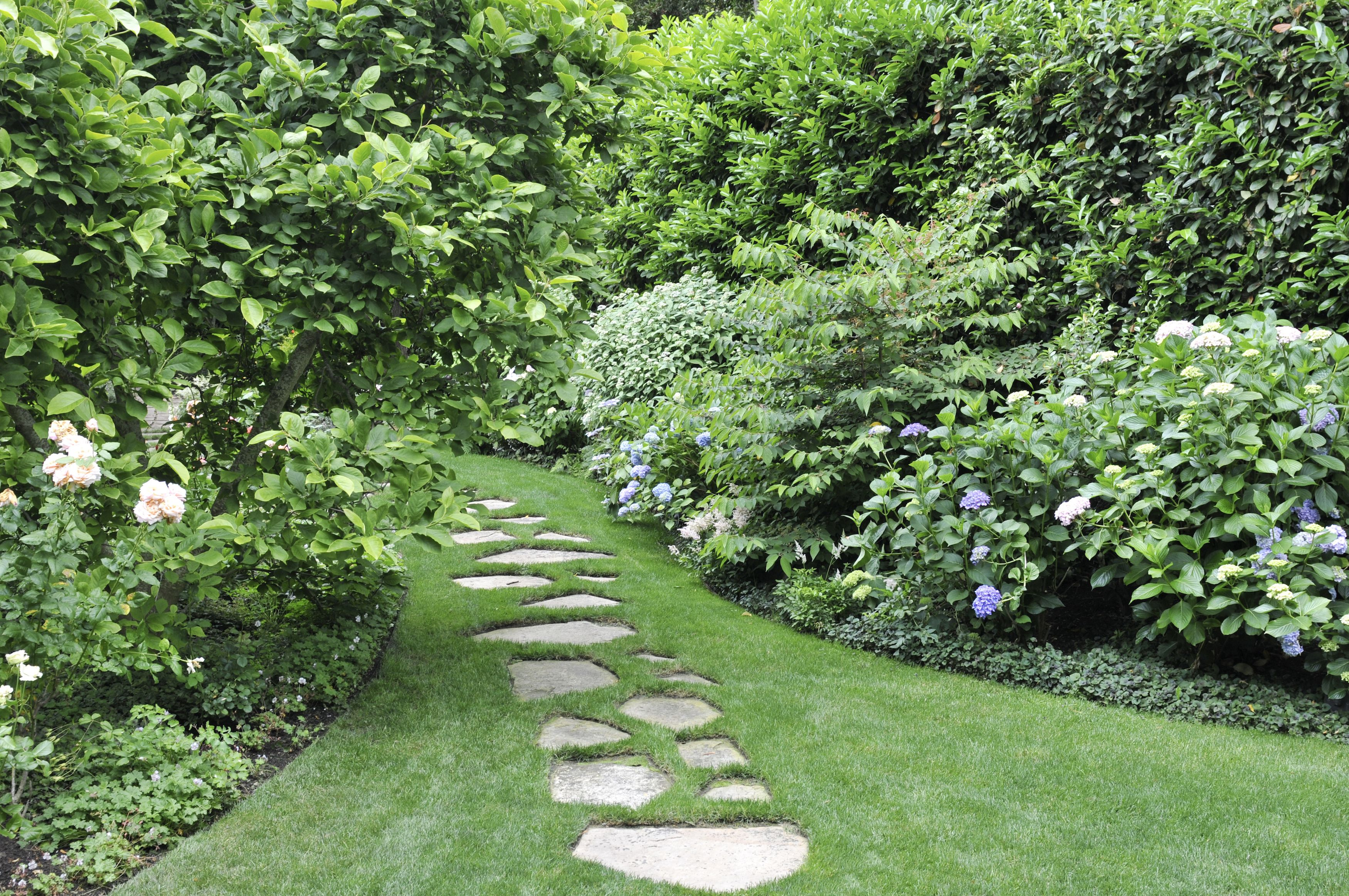20 Best Yard Landscaping Ideas for Front and Backyard ... on Best Backyard Landscaping id=37333