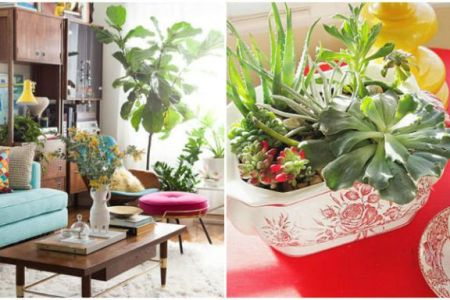 How To Decorate With Houseplants   Best Houseplant Decor image