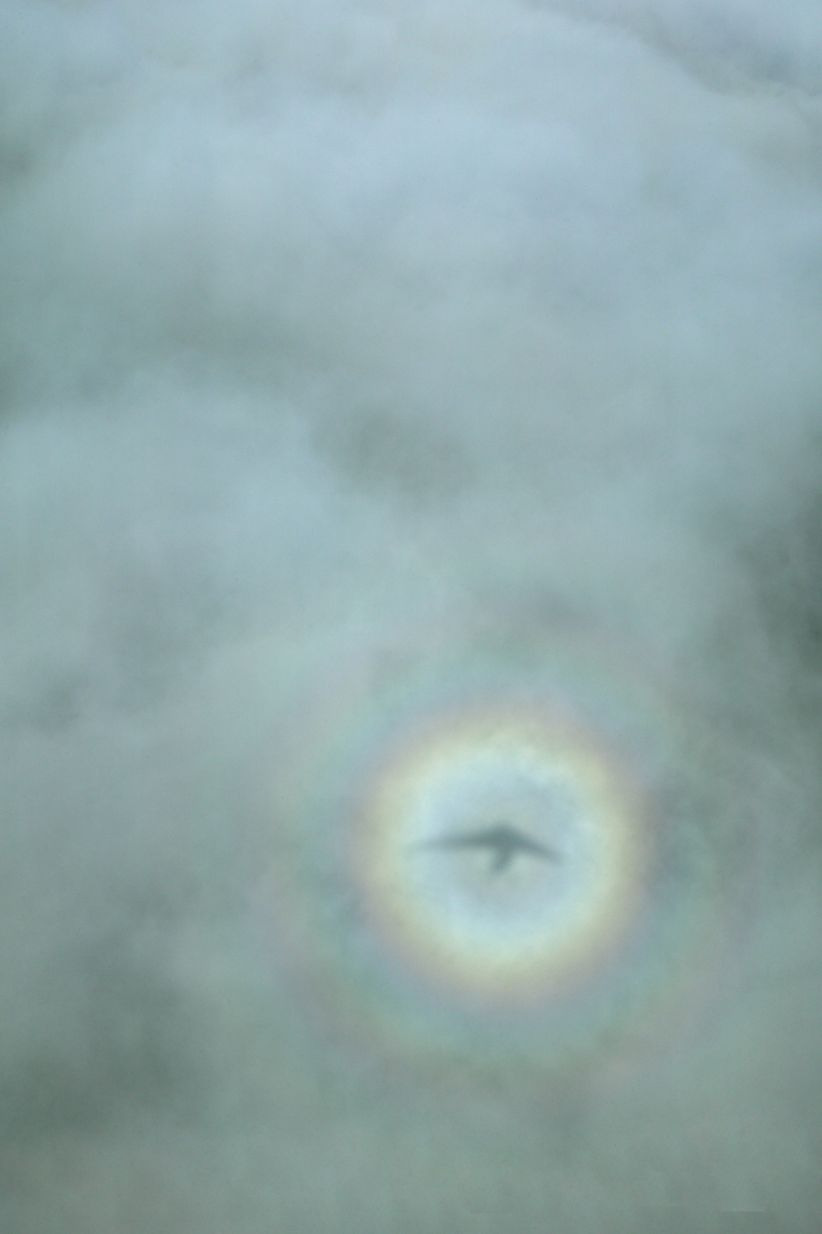 Aerial view of a shadow within a circular rainbow.