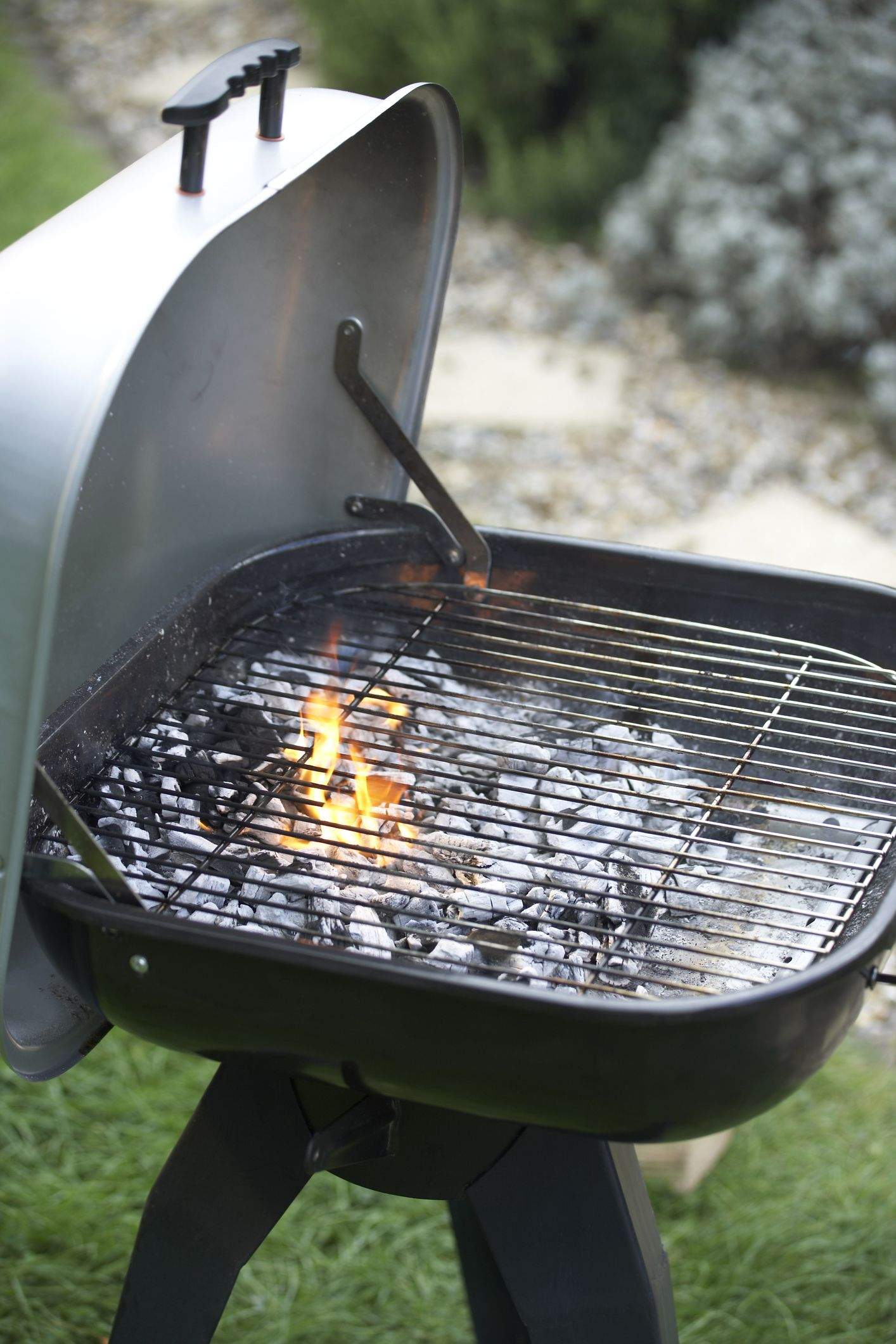 Barbecue grill, lid open