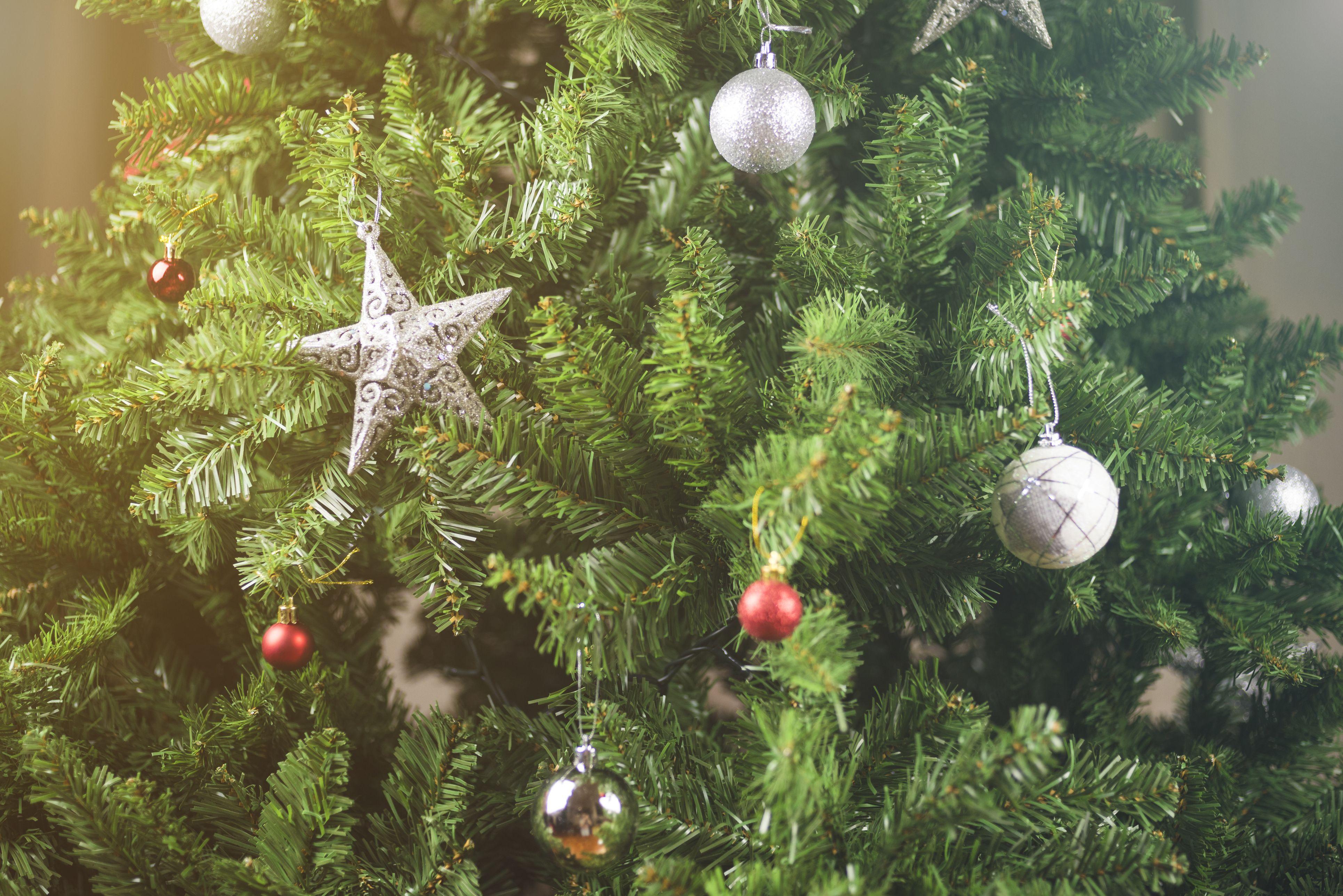 How To Make Christmas Trees Last Longer Keep A Christmas