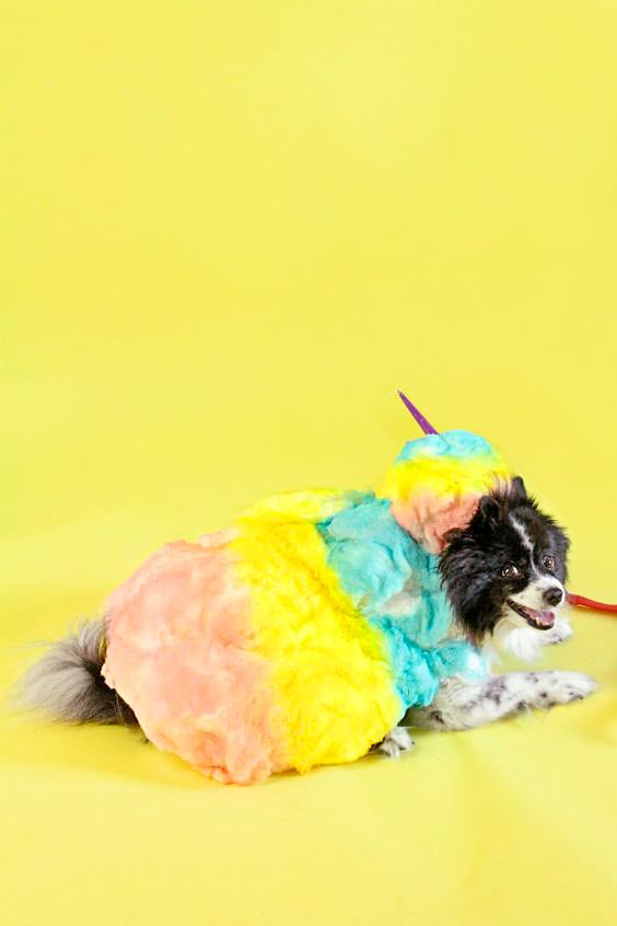 Our pet costumes will make them look adorable right along with you whether that's ghostbusters, chucky or disney. 53 Best Dog Costume Ideas Diy Pet Halloween Costumes