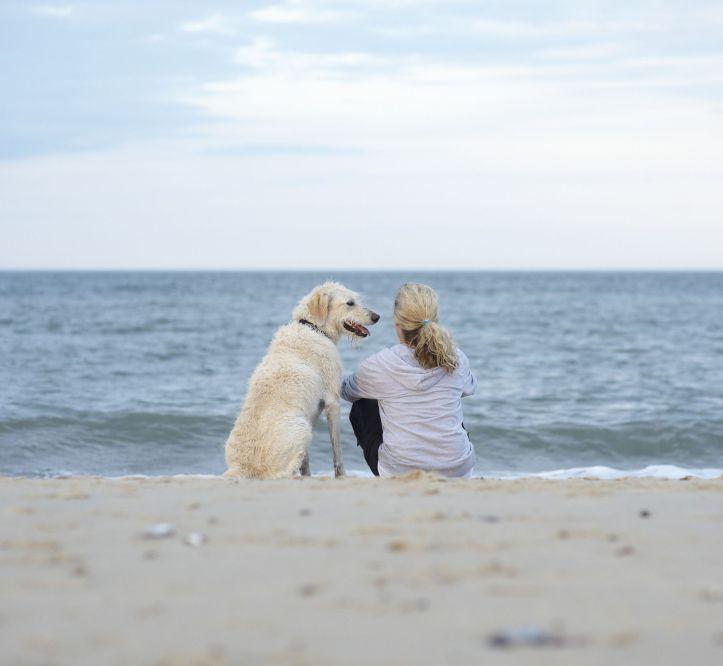 dog owner beach