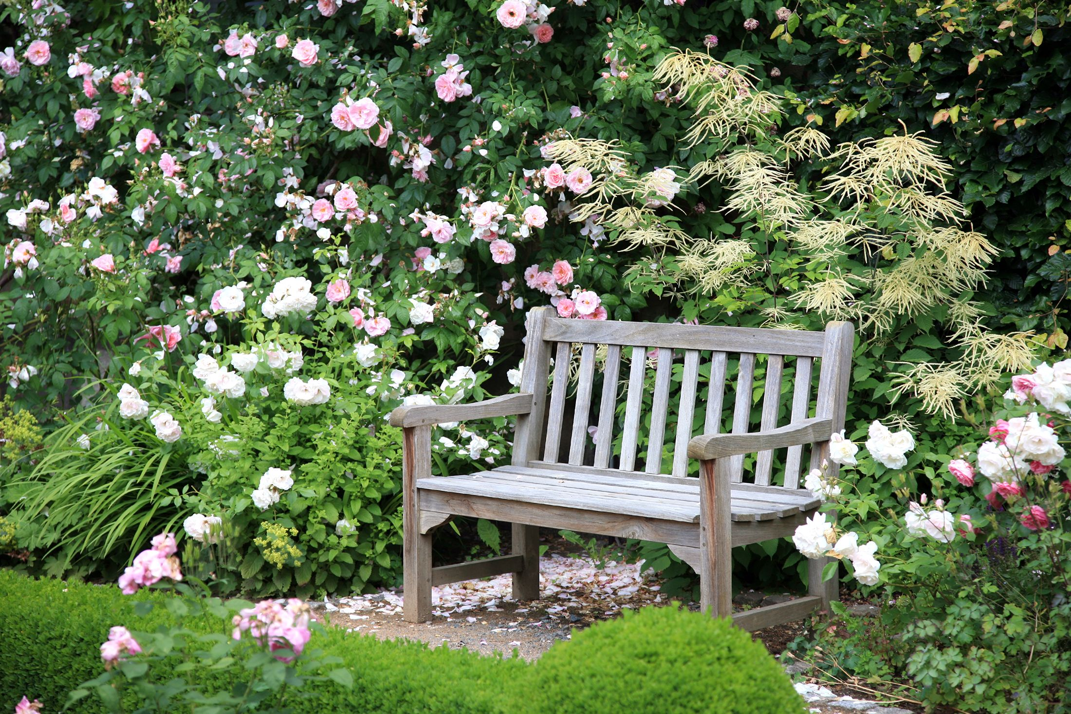 15 Best English Garden Design Ideas How To Make An English Garden Landscape