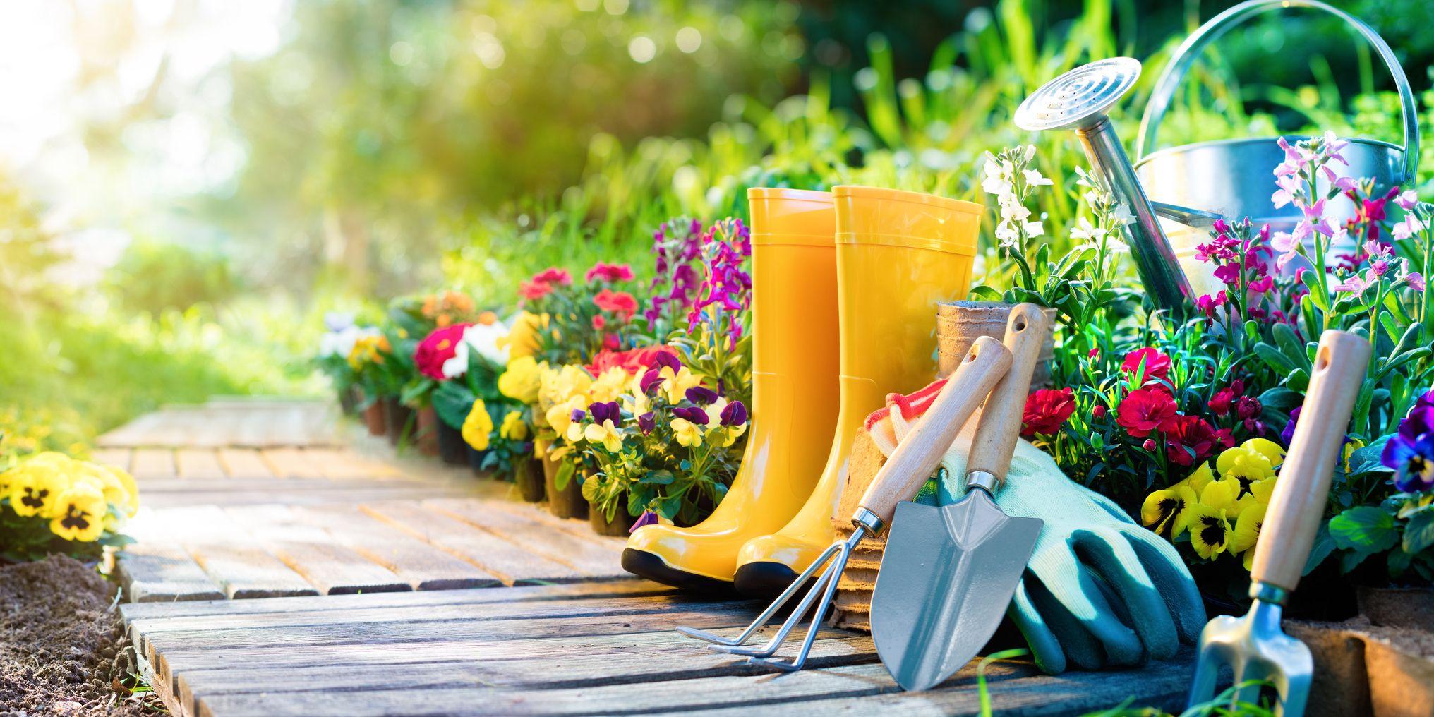 Organic Gardening - How to Start an Organic Garden on Gardening  id=36144