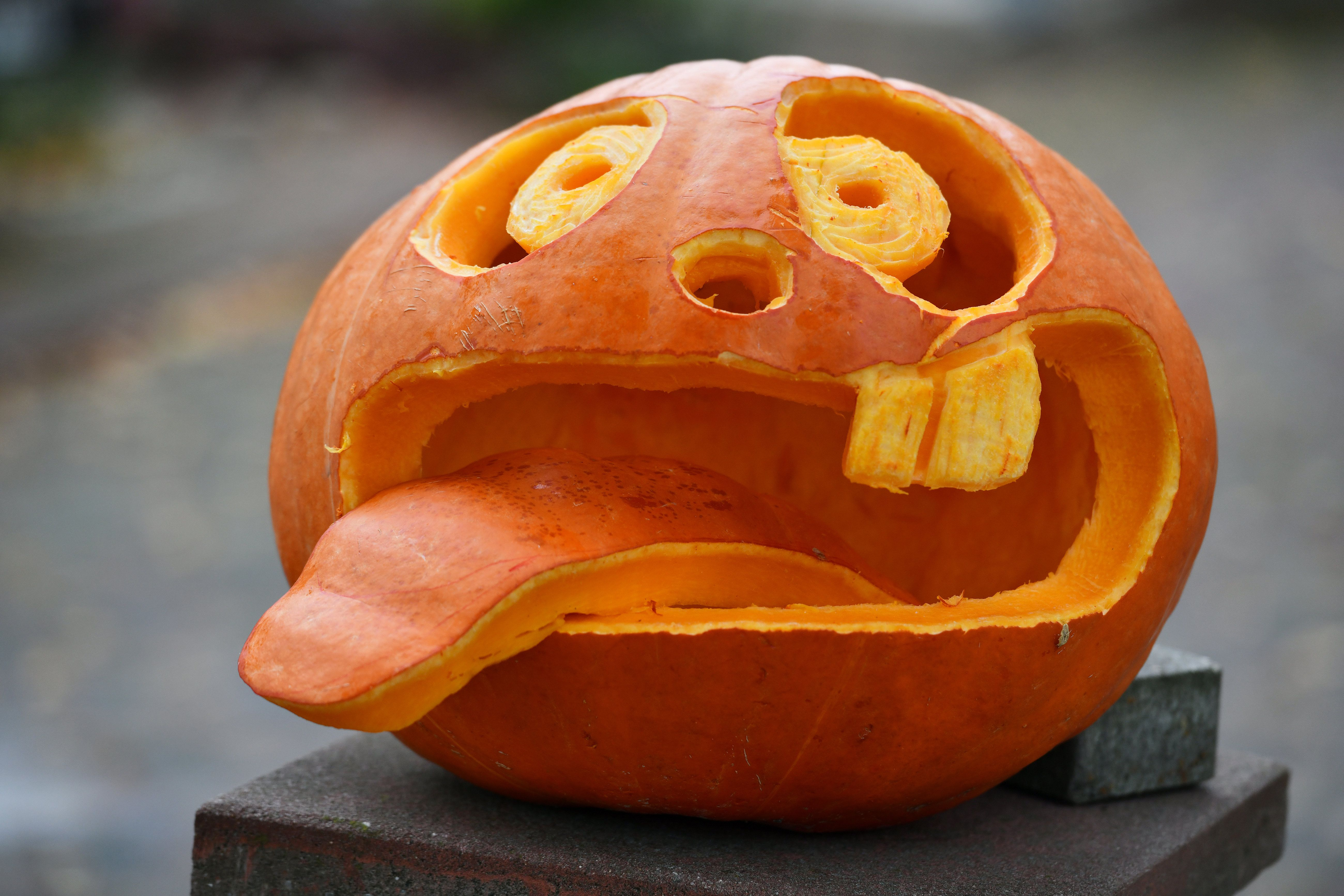 Mine is pretty flat and even. 55 Easy Pumpkin Carving Ideas For Halloween 2021 Creative Pumpkin Carving Designs