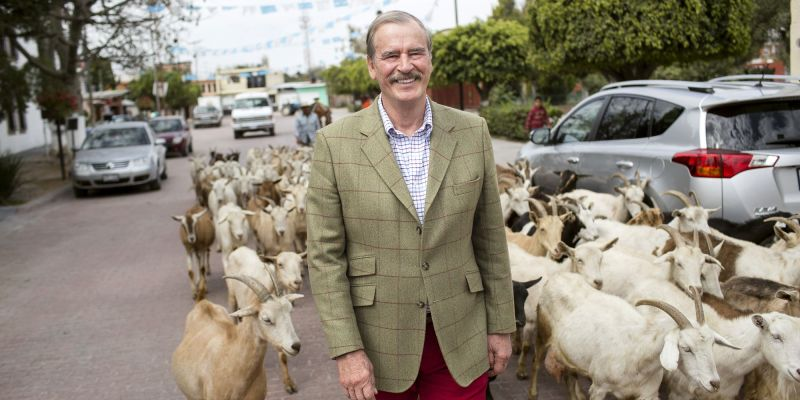 Mexican Prez Vicente Fox Taught Us Some 'Useful' Spanish Phrases for Traveling in Mexico 1