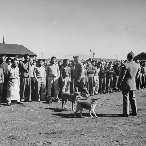Roll call is taken by the army at Japanese internment camp, Tule Lake, CA.