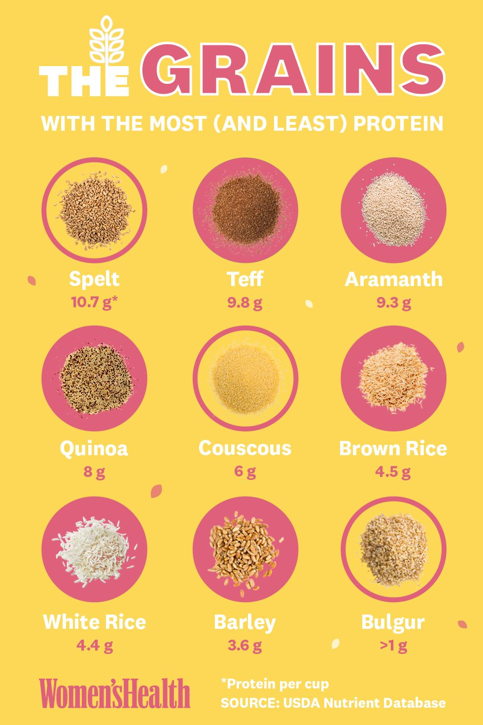 protein content of popular grains