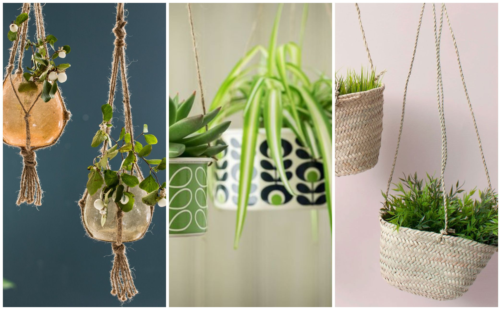 15 Best Indoor Hanging Planters on Hanging Plant Pots Indoor  id=44037