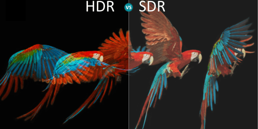 What Is HDR on TV?   Dolby Vision vs. HDR