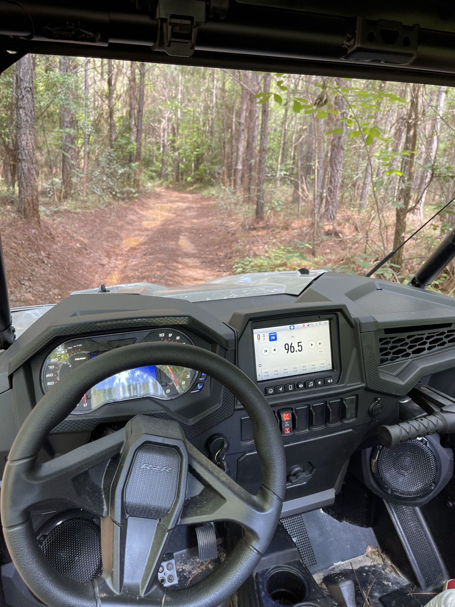 rzr trail interior, looking ahead to the trail through the woods