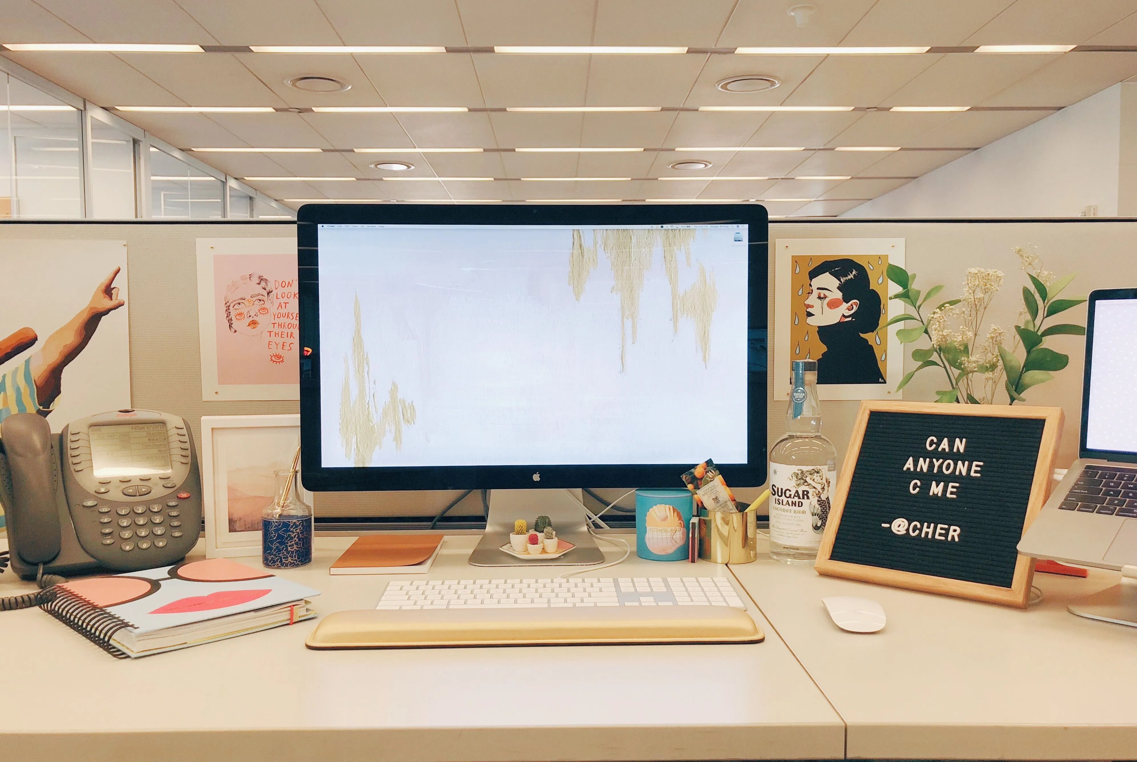 10 Best Cubicle Decor Ideas In 2018 How To Decorate Your