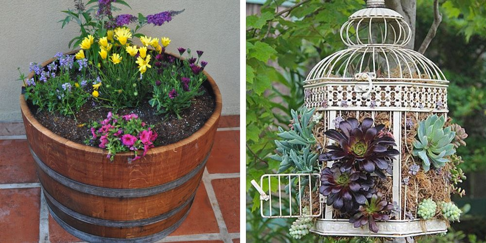 12 Unique Container Gardening Ideas