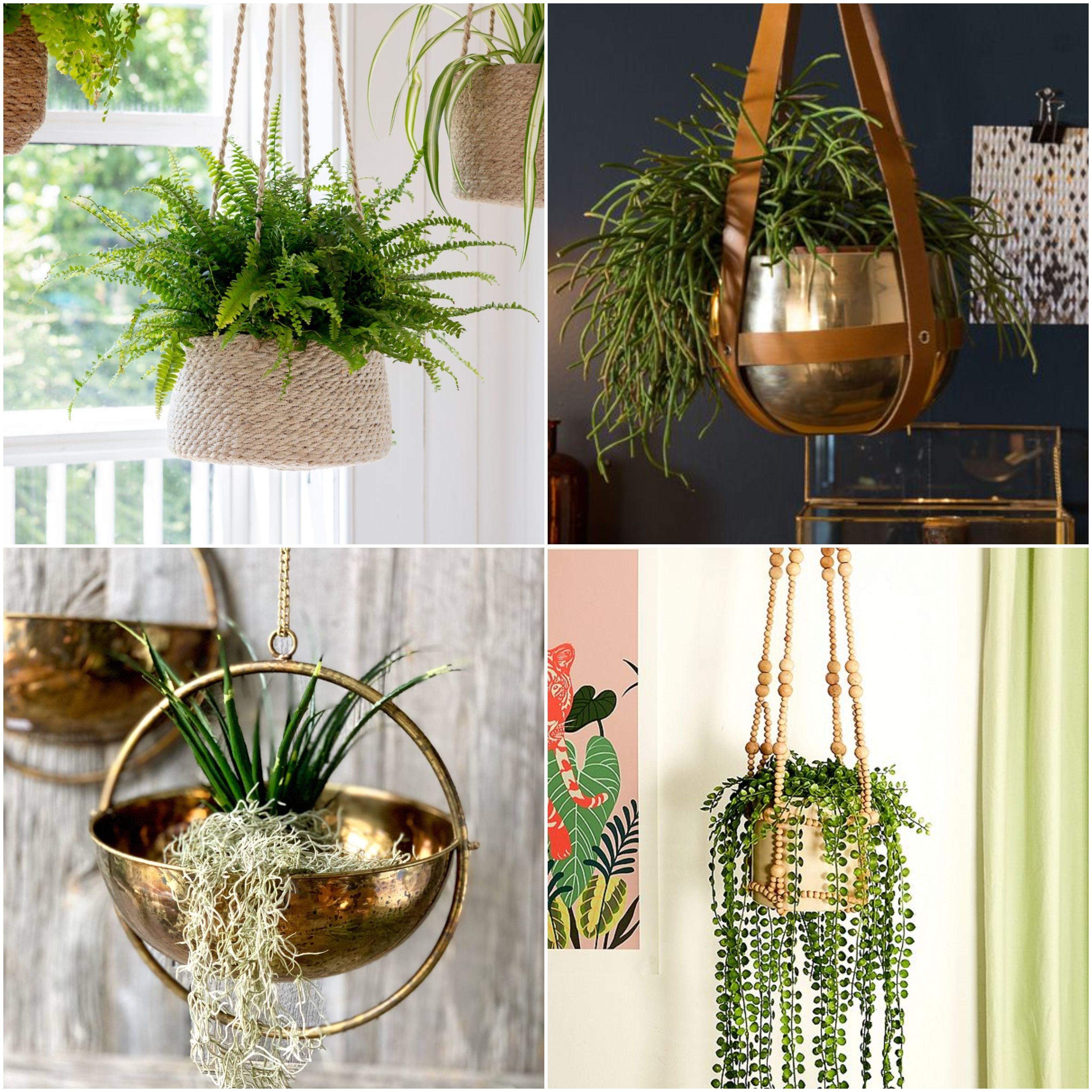 13 Best Indoor Hanging Planters on Hanging Plant Pots Indoor  id=78069