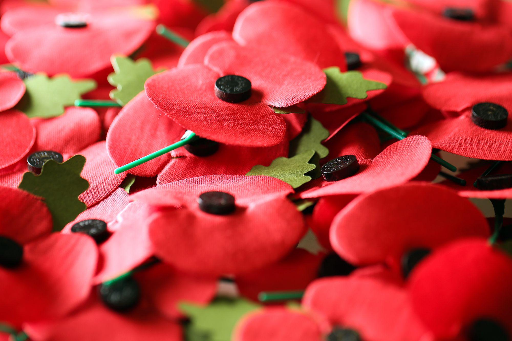 Khadi poppy photo