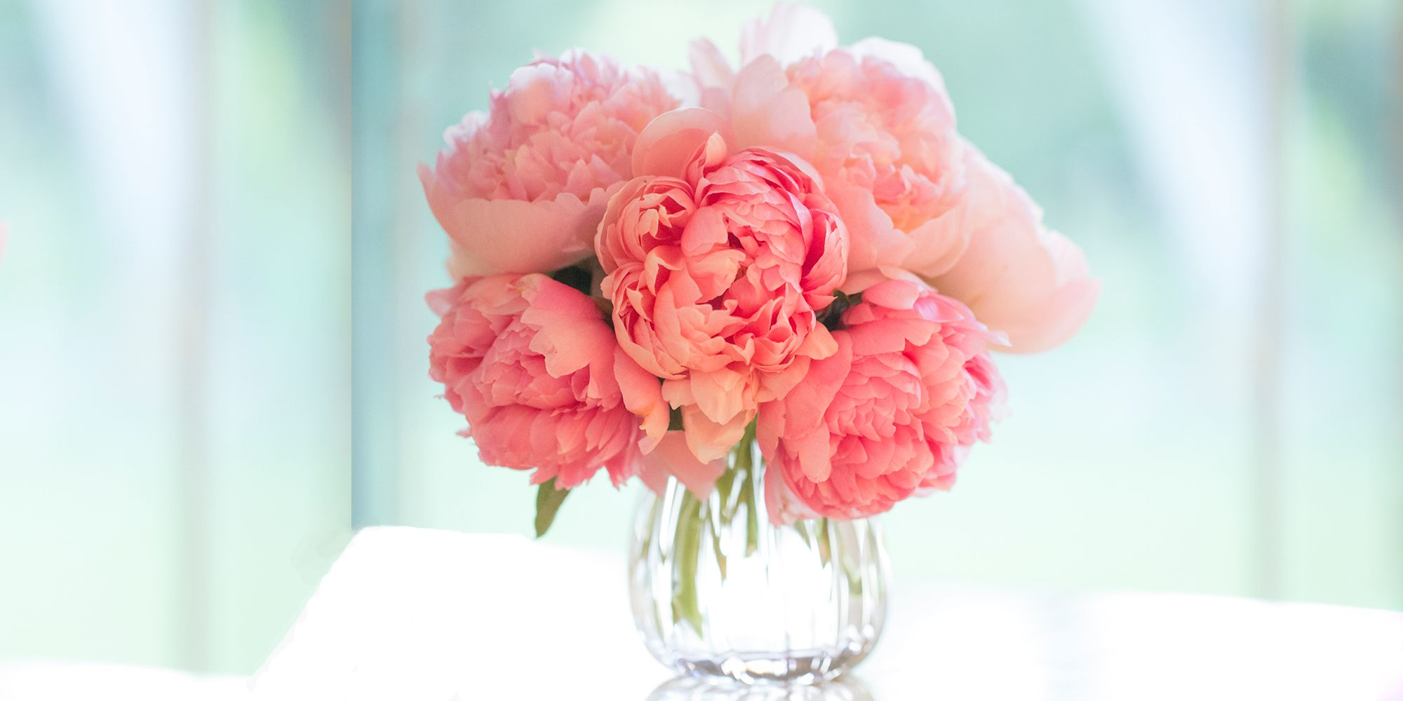 12 Facts About Peonies   History Of The Peony Flower Best Valentine s Day Flower Arrangements