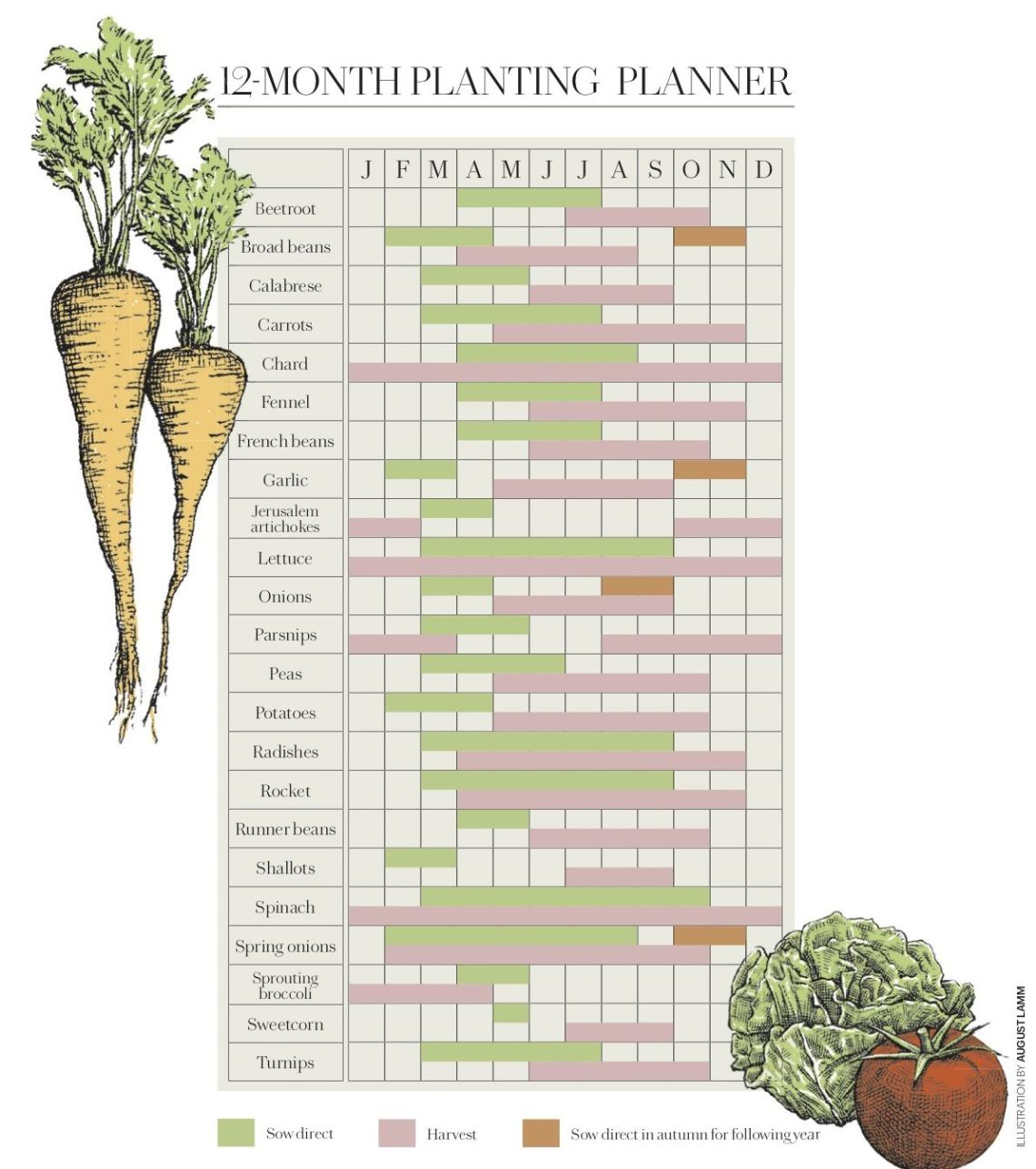 12 Month Vegetable Planting Calendar When To Plant Vegetables