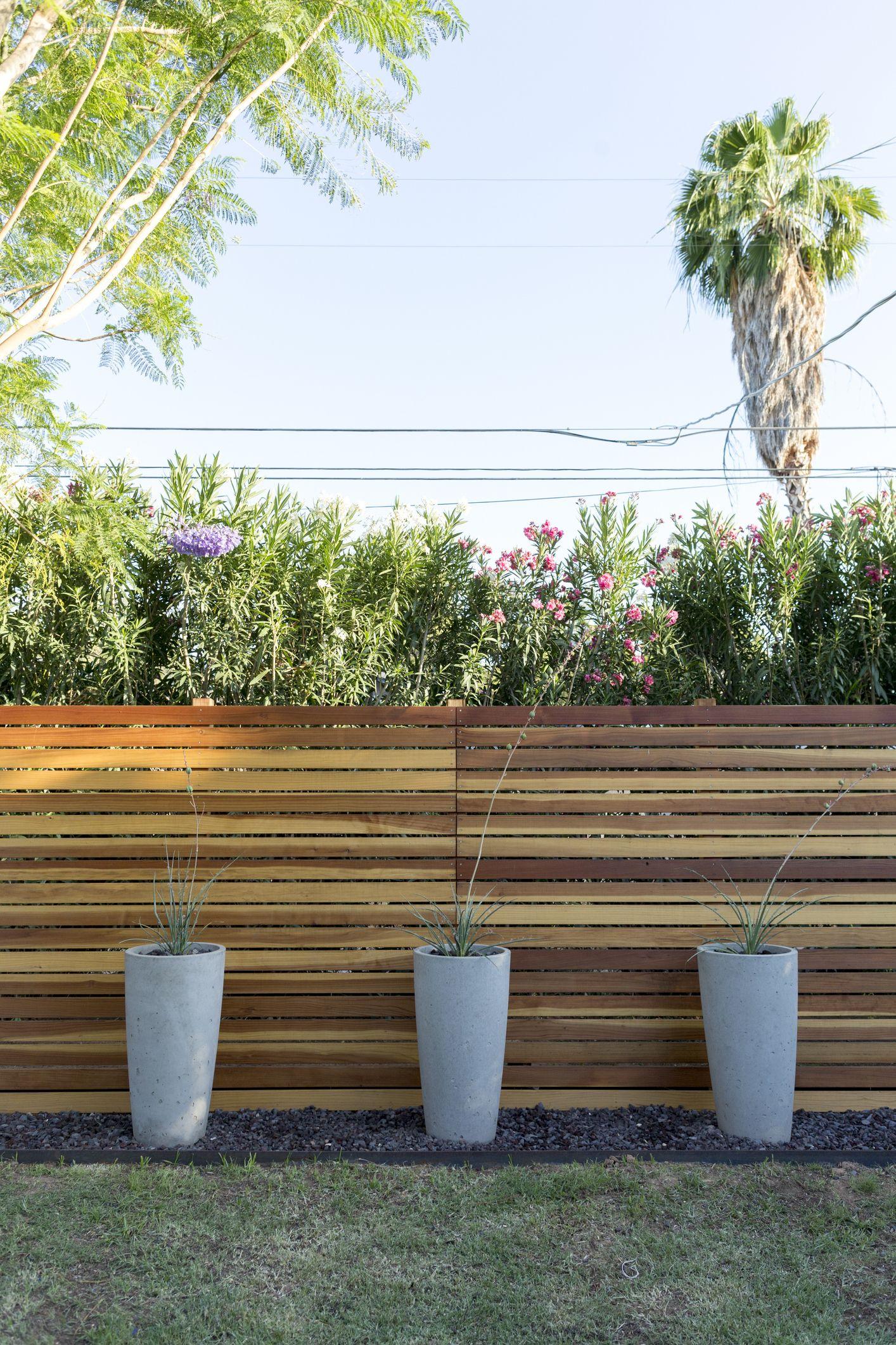 20 best backyard fence ideas privacy
