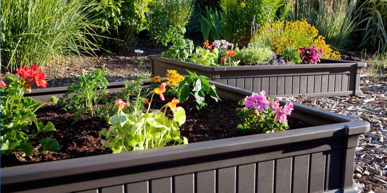 Best Raised Garden Beds How To Build A Raised Garden Bed