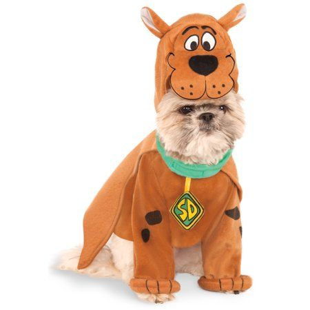Price (low to high) price (high to low) savings … 35 Best Dog Costumes For Halloween 2021 Cute Funny Halloween Costume Ideas For Puppies