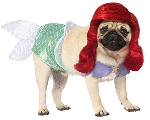 17 Funny Dog Halloween Costumes In 2020 Best Pet Costume Ideas