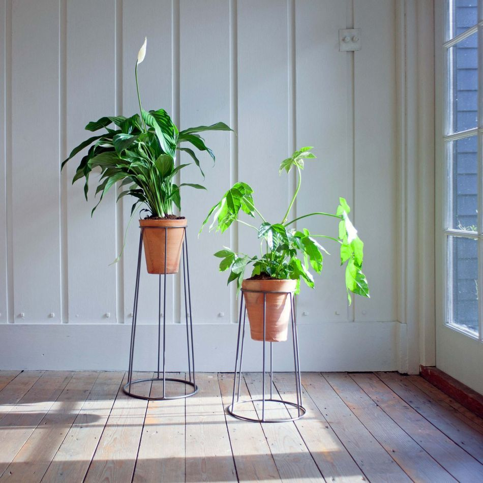 12 Best Plant Stands For Displaying Your Plants