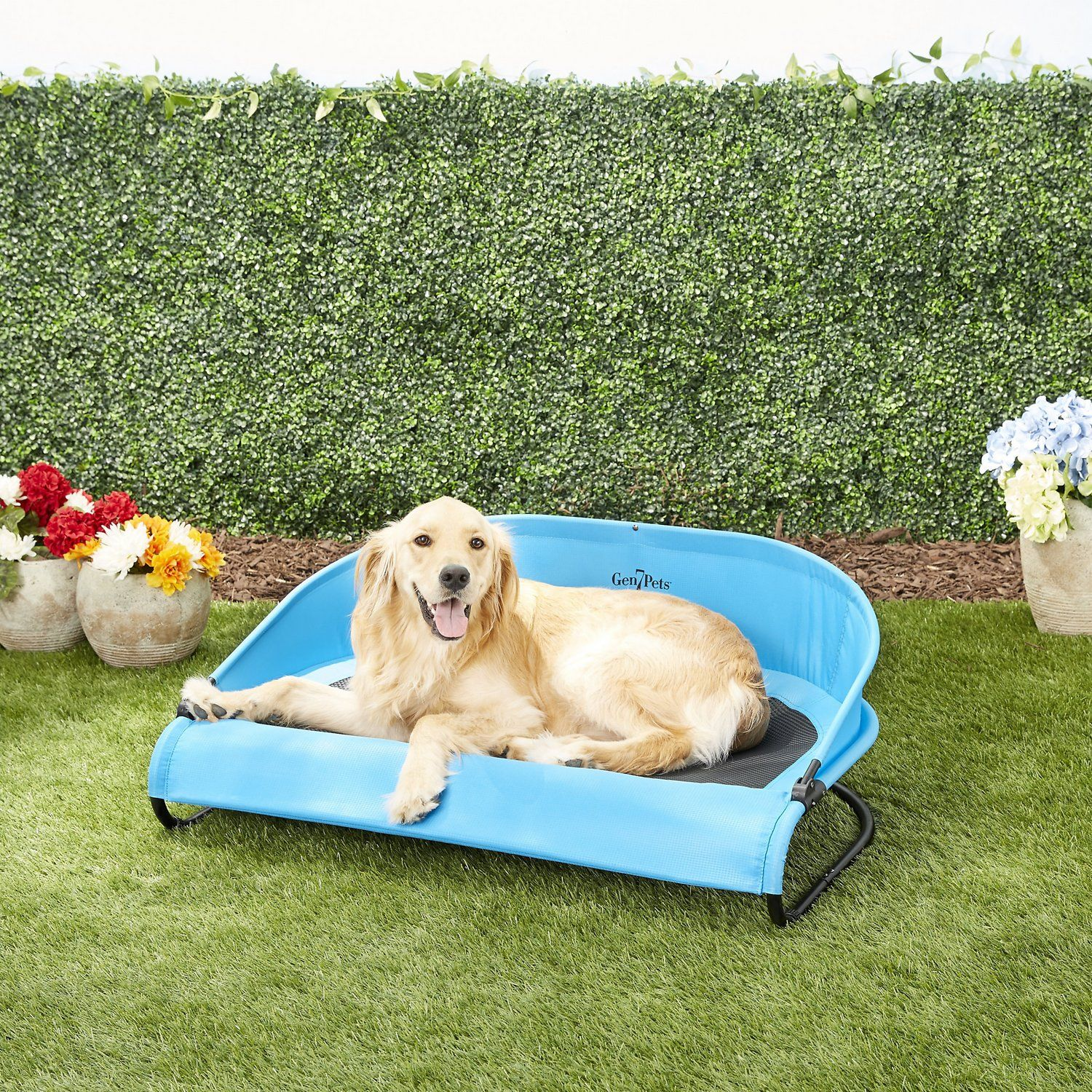 cooling elevated dog bed