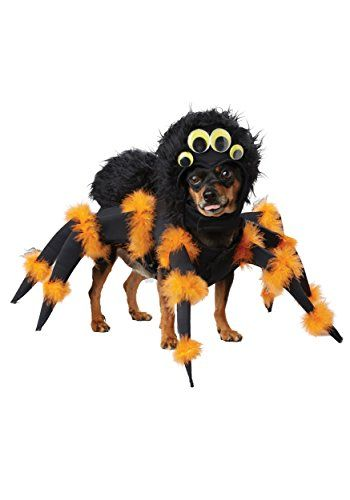 Buzzfeed staff writer the cutest pups, every day in your inbox all the most important cat stories of the week 35 Best Dog Costumes For Halloween 2021 Cute Funny Halloween Costume Ideas For Puppies