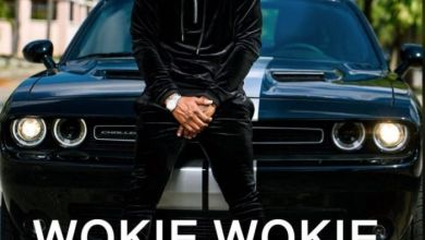 Photo of [Music] Mr. P Ft. Nyanda – Wookie Wookie