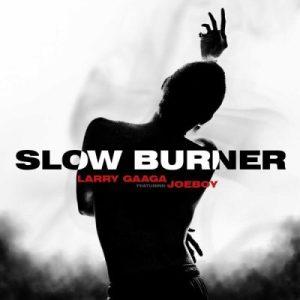 Download Larry Gaaga ft. Joeboy – Slow Burner