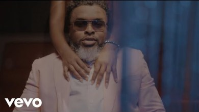 Photo of VIDEO: Larry Gaaga ft. Joeboy – Slow Burner