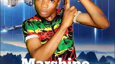 Photo of Marshine – Say U Love Me