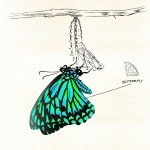 Kehlani – Butterfly [Official Audio]