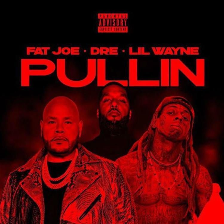 Fat Joe Pullin Mp3