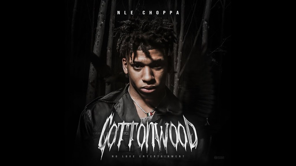 NLE Choppa – Chances