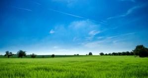 さわやかな風景(草原と青空)