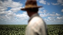 S. Africa's Gov't May Seize 195 Farms From White Owners – Reports…But True Justice Would Be To Take Them All Without Compensation,Because The Original Owners Were Never Compensated