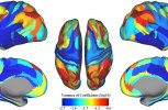 Forget passwords, 'brainprints' could be used to identify exactly who you are