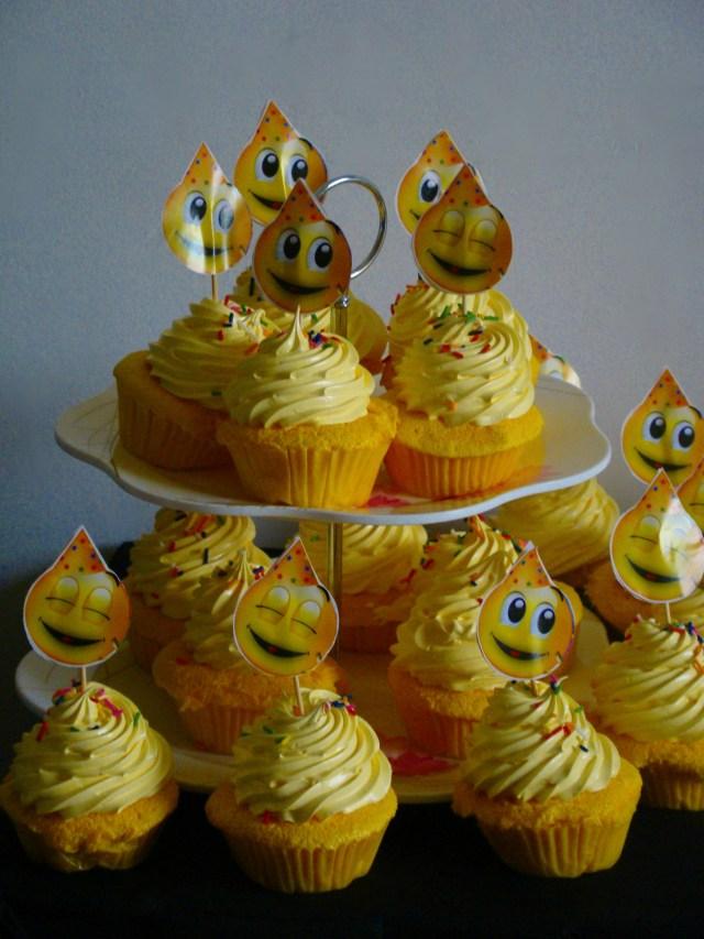 alisz bday cupcakes