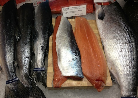 Fish Counter pink salmon