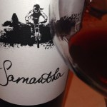 Samantha Syrah Joins a Winning Team