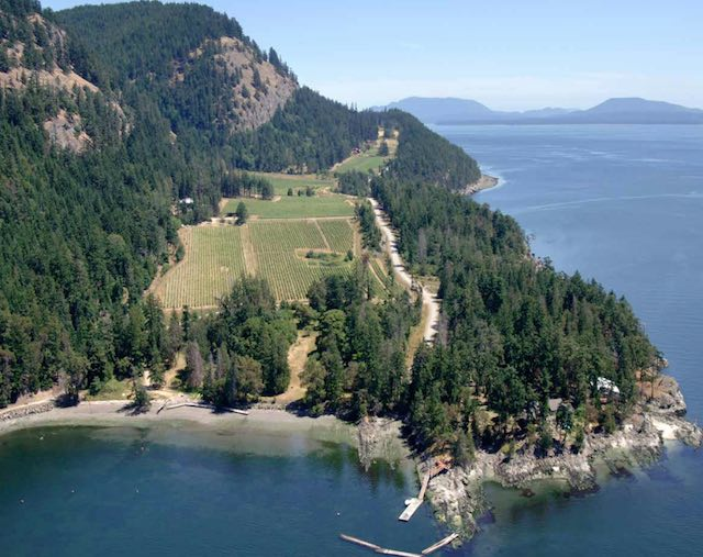 Aerial view of Saturna Island Vineyards