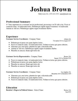Long Professional Summary Resume