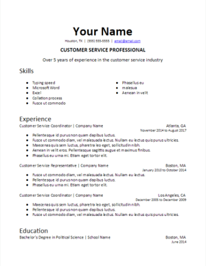 Specific Industry Professional Summary Resume Template